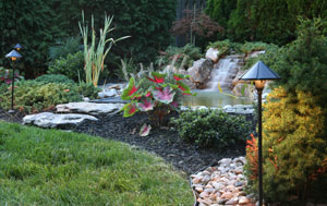 Landscape Lighting Service