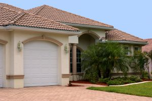 South Tampa Lawn care tips
